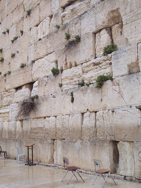 A quiet moment at the Western Wall