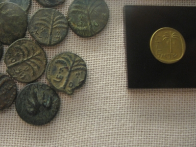 Palm trees at Haifa University Museum numismatic display