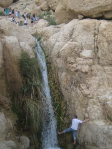 Getting your toe wet at Ein Gedi Nature Reserve